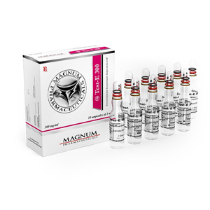 Magnum Test-E 300 - buy Testosteron enanthate in the online store | Price